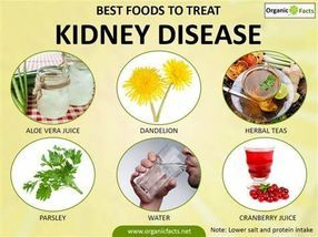 Suggested foods for kidney disease for Kidney Disease