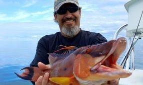 Offshore fishing charters florida