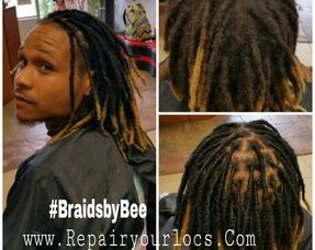 Bee repairs natural dreads
