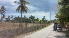 San Jose, Batangas farm lot for sale