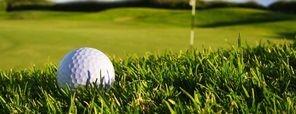 Golf Ball in Second Cut