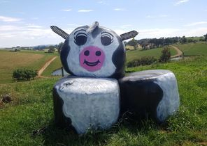 Hay Bale Art Competiton