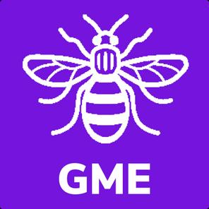 https://mediaprocessor.websimages.com/width/296/crop/0,0,296x296/www.1stheatonmoor.com/GMEBee_2
