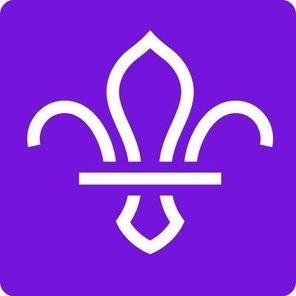 https://mediaprocessor.websimages.com/width/296/crop/0,0,296x296/www.1stheatonmoor.com/scouts.org.uk