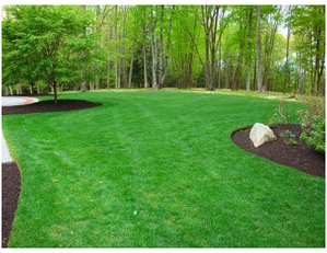 Hampshire, IL lawn Care