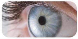 organic turmeric and lutein helps eye sight