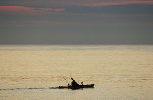 KAYAK FISHING IN PORTLAND HARBOUR