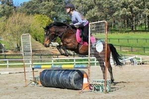 Amber jumping Freddo