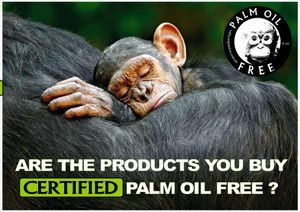 palm oil free for chimpanzees