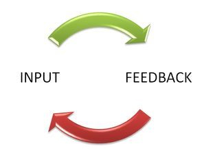 Input and feedback result in confident interactions