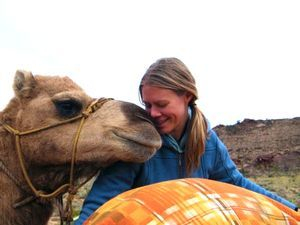 Camel Training with Trust Based Training
