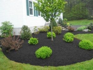 Premium Black Mulch-Great highlight to greenery or flowers