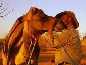 Trust based training with a wild camel
