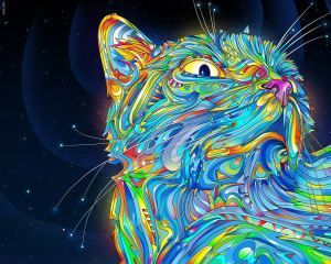 psychadelic cat