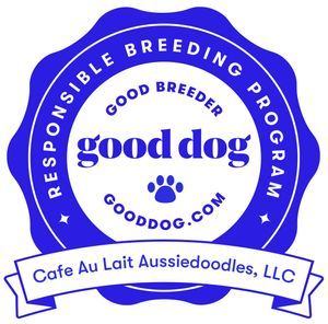 Reputable Dog Breeder from Good Dog