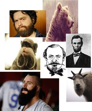 Beards 2015 FYI alert