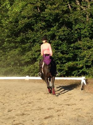 Outdoor arena lessons