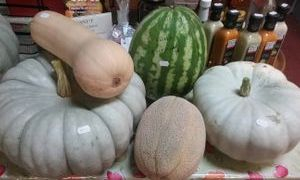 Farm grown pumpkins