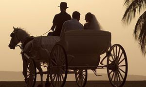Horse & Carriage wedding hire