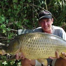 Common Carp Ebro river Spain