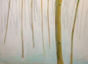 Colorado bare tree landscape