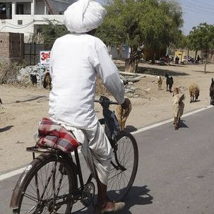 "src=""australian womens travel.jpg alt=womens tours,rajasthani man on bicycle , India"