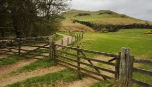 Pentland Hills Walk