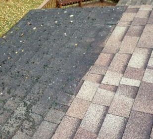 Roof_moss_removal