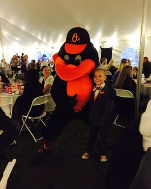 Welcome to the Oriole Bird!