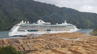 Picton Cruise Ship Shore Tour New Zealand