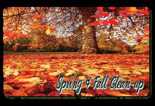 Spring Clean up Buffalo NY