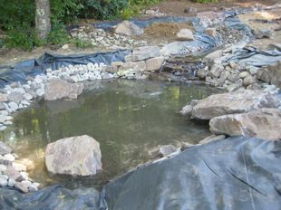 creating a natural water feature