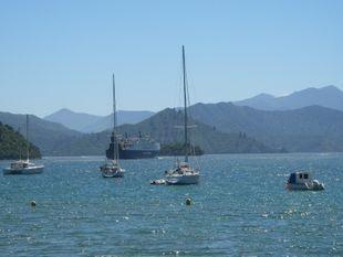 Picton Cruise Ship Shore Excursion
