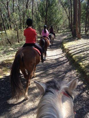 Holiday program trail ride