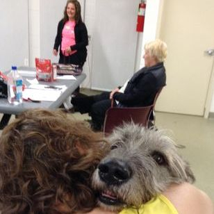 Irish Wolfhound -  Ailidh - A Gift of Hugs