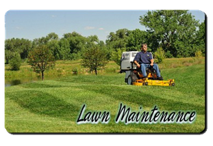 Lawn Care Buffalo NY