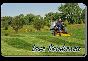 Lawn Care Buffalo NY
