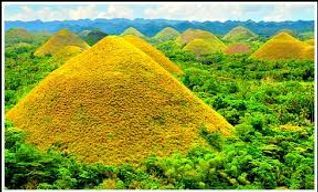 Explore the natural wonders of Bohol with our Countryside Tour.  Place to Visit :Chocolate Hills,Tarsier Watching, Loboc River Cruise , Baclayon Old Church, Man-made Forest, Butterfly Garden, Sipatan Hanging Bridge, Blood Compack, Prony the Python  and Aproniana Souvenir Shop.