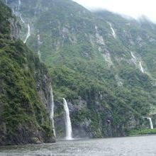 Doubtful Sound Private Guided tour
