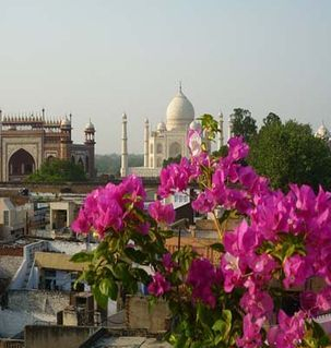 "src=""australian womens travel.jpg alt=womens travel,view of taj mahal in the distance, with bougenvillia in front, agra , India"