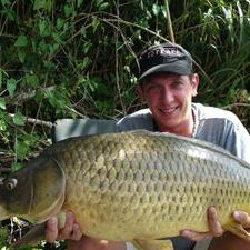 Common Carp Ebro river Spain