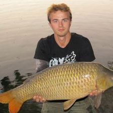 Ebro common carp Spain