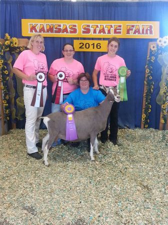Kansas 2016 Best in Show