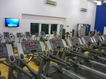 7 Treadmills,