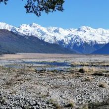 New Zealand Private Tour