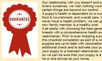 ONE YEAR HEALTH GUARANTEE