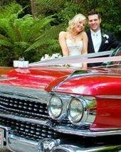 Lyre Bird Falls Weddings