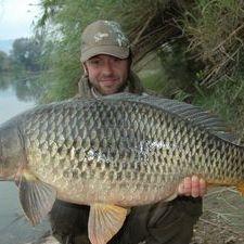 Ebro Carp river Ebro Spain