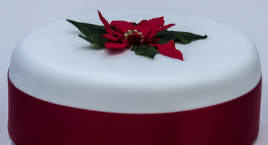 Preview of our 2015 Christmas Cake designs....  (Copyright: Nick Wood Photography)