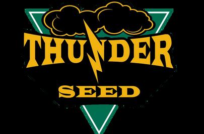 Thunder Seed Grygla Seed